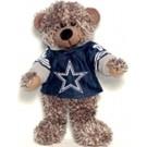 NFL-Sweater Hoodie Bear-2