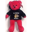 NHL-Team Color Hoodie Bear-1