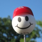 MLB Nationals Antenna Topper